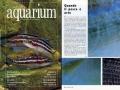 01-acquarium_rivista